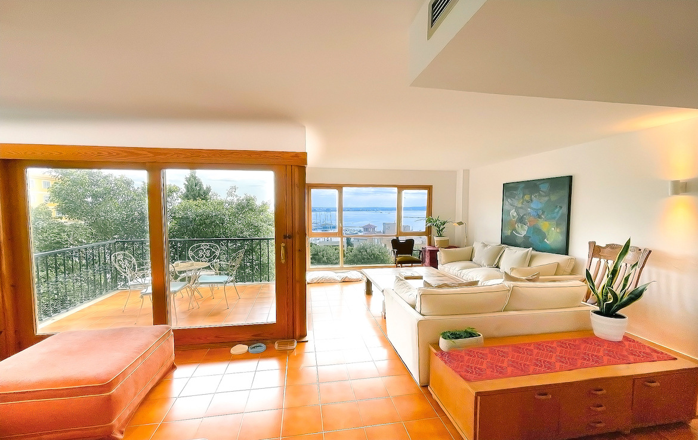 amazing property in bonanova